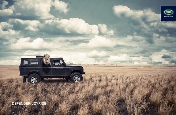 48514_Land rover